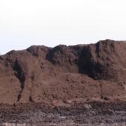 Грунт плодородный (Чернозем востановленый). Доставка самосвалами и в мешках. фото
