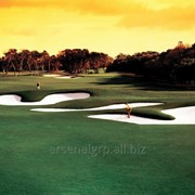 Кварцевый белый песок для гольф-полей фото