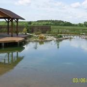 Сервис водоемов фото