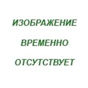Твердомер ТПП-2 (переносной) фото