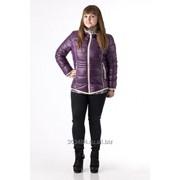 Куртка женская зимняя фото