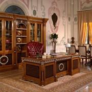 Рабочие кабинеты и библиотеки фото