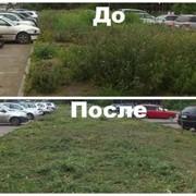 Услуги газонокосильщика фотография