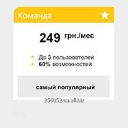 """Организация бухгалтерского учета Пакет """"Команда"""" фото"""