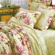 Комплекты постельного белья из поплина фото