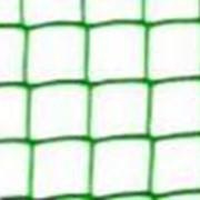 Сетки пластиковые для сада и огорода код Ф ячейка 50х50 фото