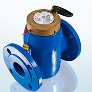 Счетчик воды универсальный СВМТ-50 Бетар фото
