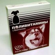 Витамины для собак фото