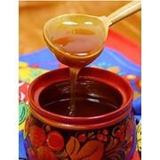 Мед из подсолничника и разнотравия фото