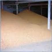 Сушка зерна