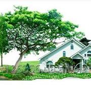 Органическое удобрение «РИВЕРМ» фото