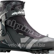 Лыжные ботинки Alpina 50231K фото
