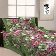 Ткань постельная Бязь 125 гр/м2 150 см Набивная цветной 3414-1/S TDT фото