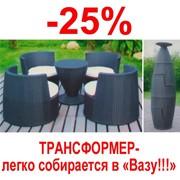 Набор мебели из искусственного ротанга Ваза фото
