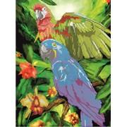 Схема для вышивки бисером Попугаи КМР 3053 фото