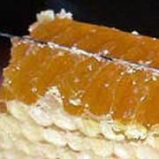 Мед свежий фото