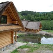 Баня деревянная сосновая фото
