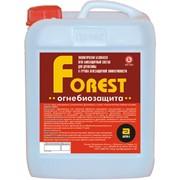 Огнебиозащитные пропитки для древесины ОГНЕБИОЗАЩИТА FOREST фото