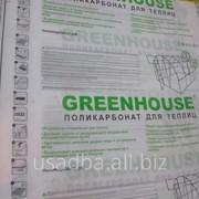 Сотовый поликарбонат Greenhouse 3,5мм*12м фото
