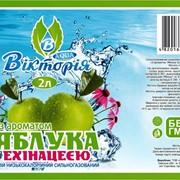 """Напиток с ароматом яблоко-эхинацея ТМ """"Виктория"""" фото"""