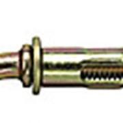 Анкерный болт с кольцом *10х60 фото
