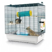 Клетка для грызунов Savic Chichi 2 фото