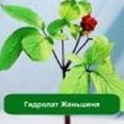 Гидролат Женьшеня - 1 литр фото