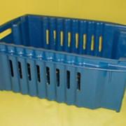Ящик полимерный для овощей и фруктов №3 окрашенный фото
