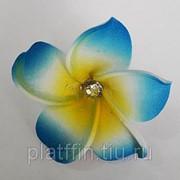 Ц4 Цветок гавайский 4см(Копия) фото