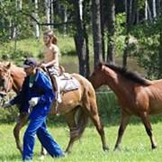 Конные прогулки. фото