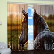 """Фотошторы """"Задумчивый конь"""" фото"""