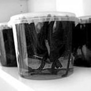Пиявки медицинские в упаковке фото