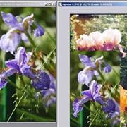 Сканирование и обработка изображений фото