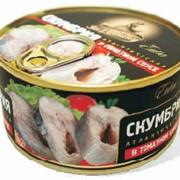 Скумбрия атлантическая в томатном соусе, ключ 185 гр, Скумбрия консервированная фото