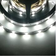 Светодиоды 5050-L30-IP33-White фото