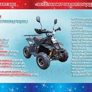 Электроквадроцикл модель 800E фото