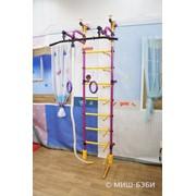 Детский спортивный комплекс Формула здоровья Жирафик универсальный фото