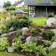 Альпинарии, рокарии,каменистый сад,цветник фото