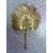 Золотая пальма фото