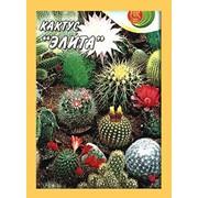 Семена комнатного растения Кактусы Элита, смесь фото
