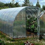 Каркасные укрытия для зимующих растений в Кишиневе фото