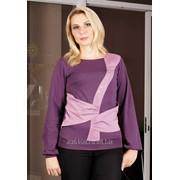 Блуза 1485-1 Брусника цвет фото