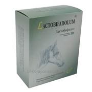 Пробиотик ветеринарный для лошадей Лактобифадол фото