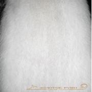 Мех натуральный писец фото