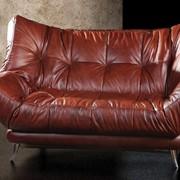 Кожаная мебель Соло 09 фото