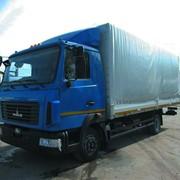 Бортовые МАЗ-4371W2-431-000 фото