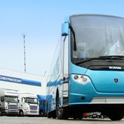 Автобусы OmniExpress фото