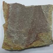 Природный камень златолит фото