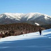 Лыжный тур Уральский лыжный 5 дней фото