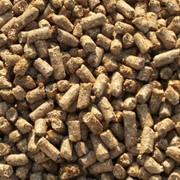 Кукуруза гранулированная фото
